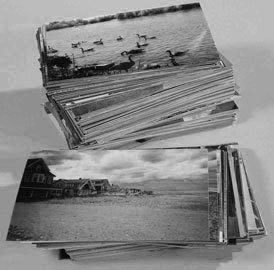 Loose photos for scanning